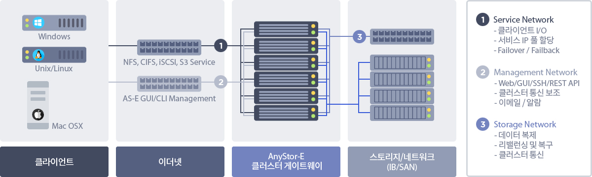 ASE_network_02